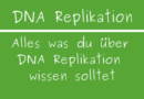DNA-Replikation