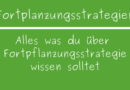 Fortpflanzungsstrategien