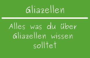 Gliazellen