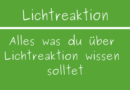 Lichtreaktion