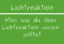 Lichtreaktion