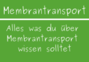 Membrantransport