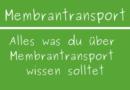 Membrantransport