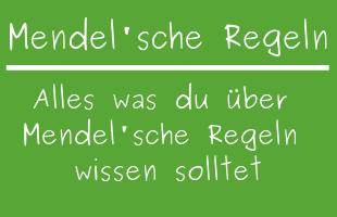 Mendel'sche Regeln